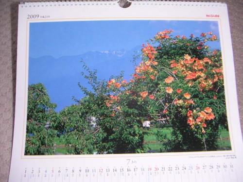 7月の写真:ノウゼンカズラと中央アルプス宝剣岳