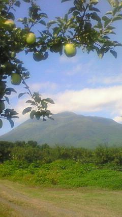 リンゴと岩木山