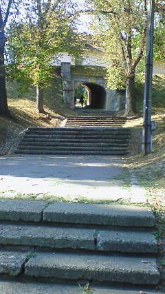 高台への遊歩道