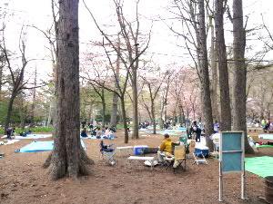 札幌円山公園では(2)