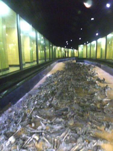 発掘された800体以上の遺骨
