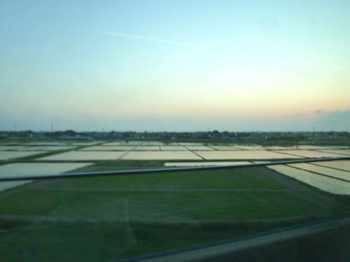 日没直後の木更津周辺の田んぼ