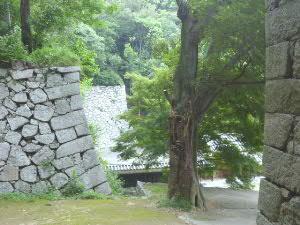 石垣が織りなす景観