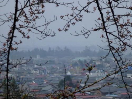 飯盛山から見る若松城(中央右奥)、白虎隊も燃える城をここから・・・