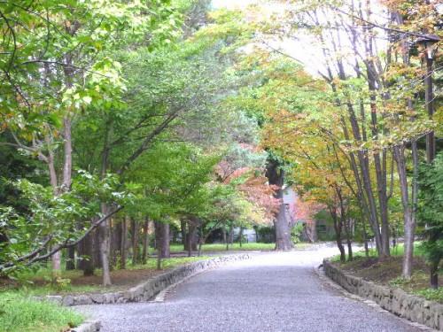 北海道神宮境内では、秋