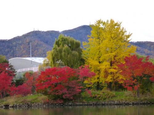 中島公園から藻岩山を