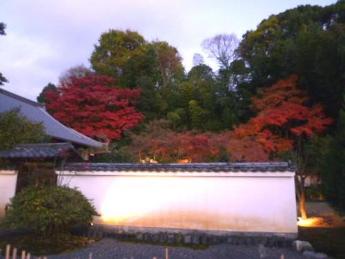 高台寺・月真院