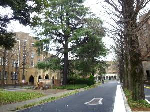 東京大学弥生キャンパス・農学部弥生講堂前