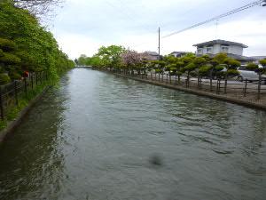 今も流れる「稲生川」、灌漑用水路なので秋から夏は底がみえるとか