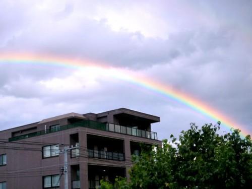 財団事務所窓から、大きな虹がくっきり