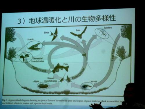 この図に尽きる!地球温暖化と川の生物多様性