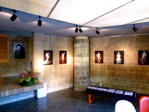 特別展示室では「ワグナー・ナンドールの生涯」も
