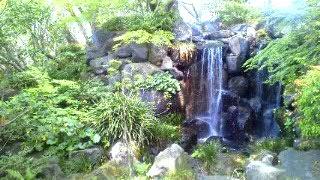 紅葉山庭園内の滝