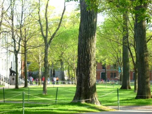 左にジョン・ハーバードの坐像、この日も観光客の一群が