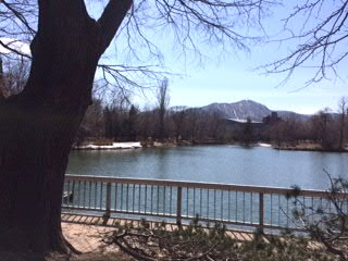 中島公園菖蒲池から藻岩山