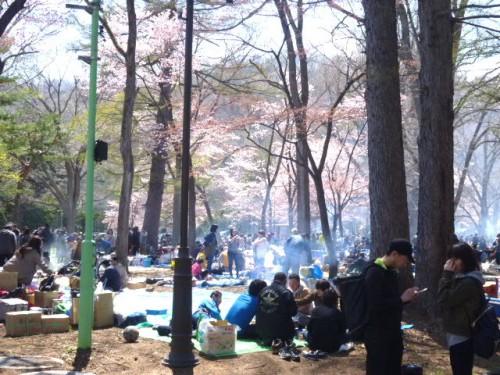 円山公園では午前中から煙がモウモウ