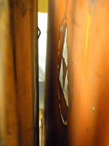 初めて開陳された鏡の裏側