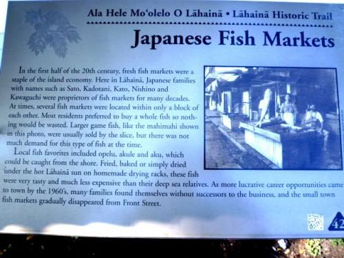 日本人の活躍の軌跡