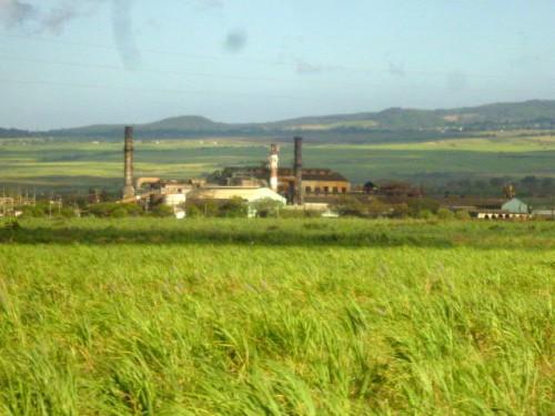 既に閉鎖されたサトウキビ工場