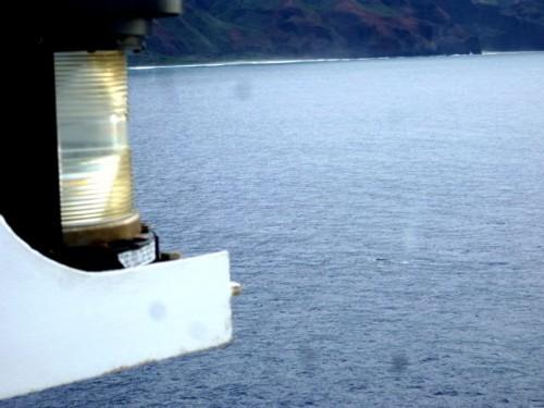 右下、ザトウクジラ(カウアイ島ナパリコースト)