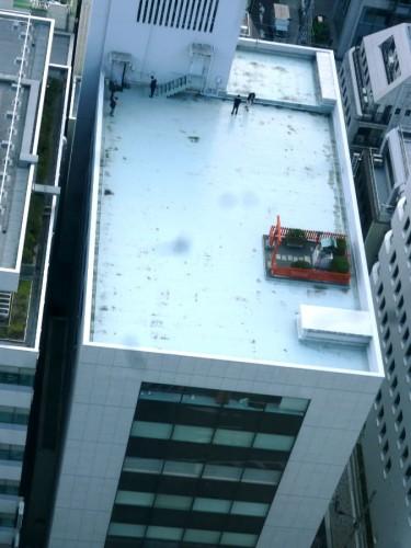 屋上の一角に真っ赤な鳥居と囲い!