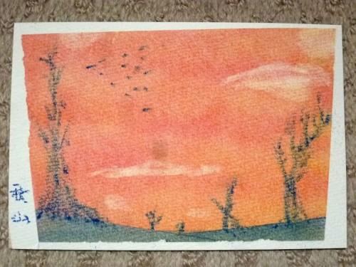 夕焼けの草原を鳥の群れが