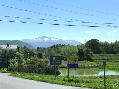 北海道の春ですね