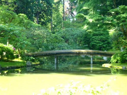 「大平洋に掛ける橋」をモチーフに