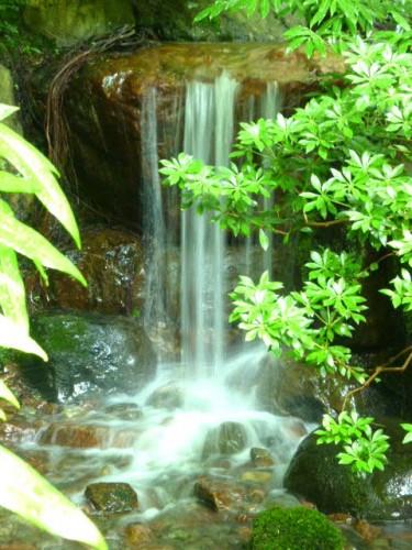 滝から落ちるこだわりの水の音