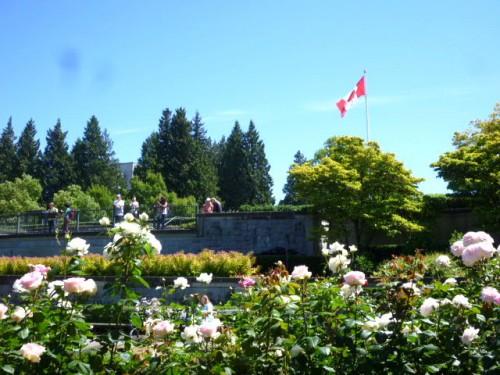 バラ園とカナダ国旗