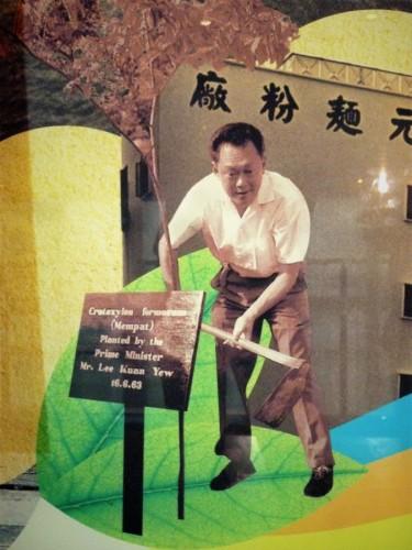 建国の父、リー・クワン・ユー