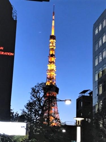 冬の東京の空はすっきりと