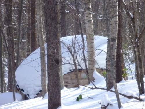拠点近くのコンポストも深い雪の中