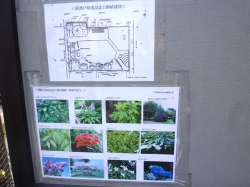公園内の植栽の説明