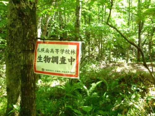 環境林・教育林としての空間も