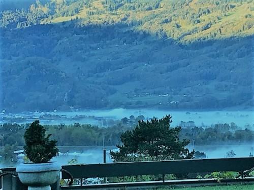朝霧も美しく