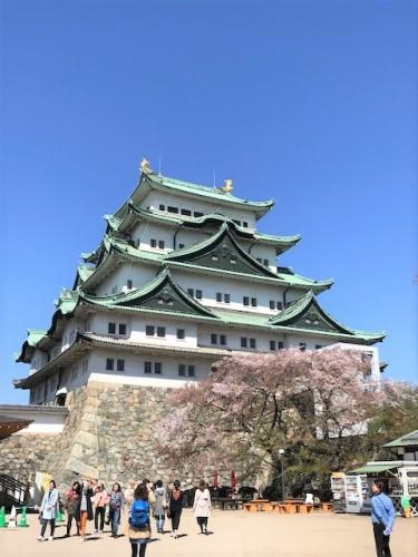 久しぶりの名古屋城