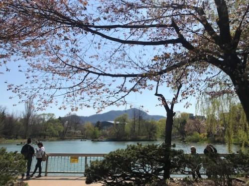 私の札幌の原風景