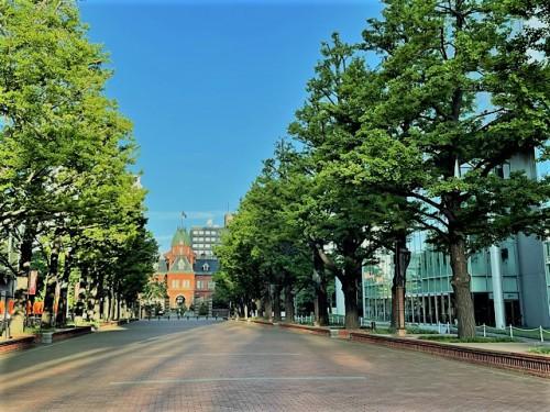 北三条通り道庁